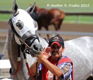 TENS WILD and his groom, Felix, coming to the paddock before the race.