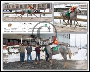 TENS WILD_3 Way