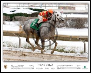 TENS WILD_Action W-Caption