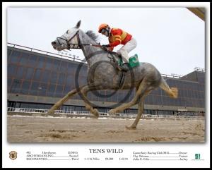 TENS WILD_Under Rail-1 W-Caption