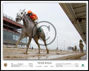 TENS WILD_Under Rail-2 W-Caption