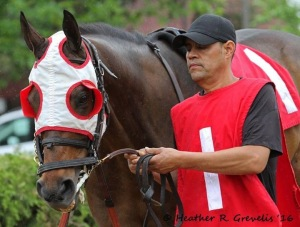 Kipper Key during the post parade before the race.